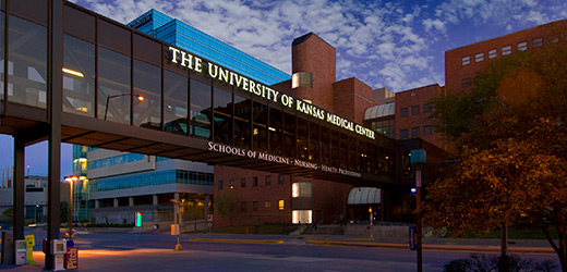 The University of Kansas Cancer Center's Quest for National Cancer Institute Designation